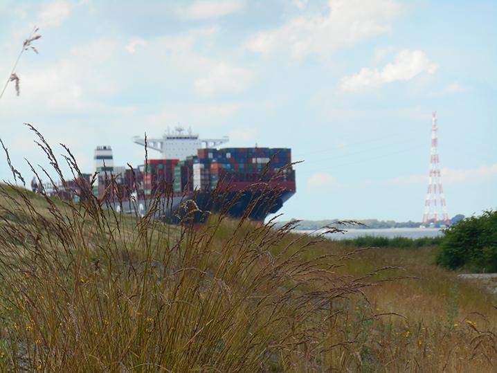 Frachtschiff am Elberadweg Nord