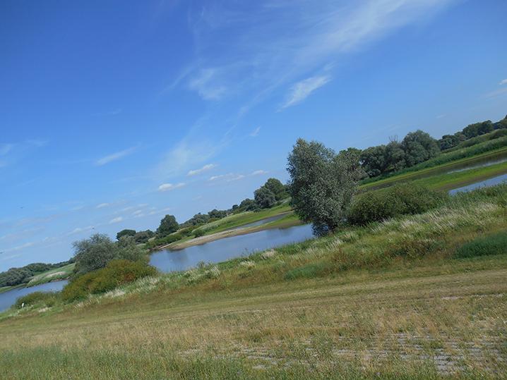 Elberadweg Nord bei Hitzacker